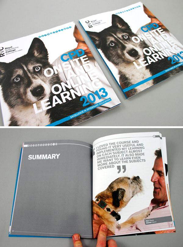 10-rvc-cpd-brochure-2013
